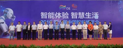 第六届中国智博会暨中国智能产业高峰论坛智闪合肥