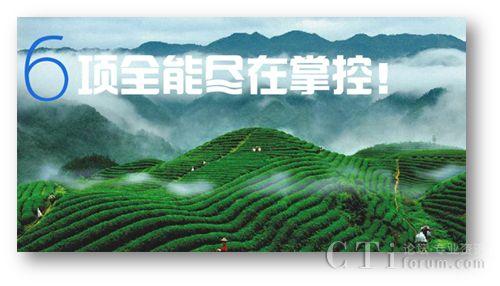 XTools CRM助力茶业企业,实现盈利提升