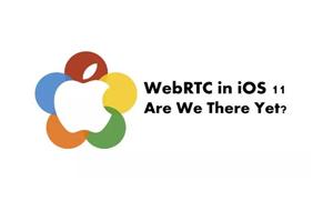 从2017到2018、WebRTC的路越走越宽