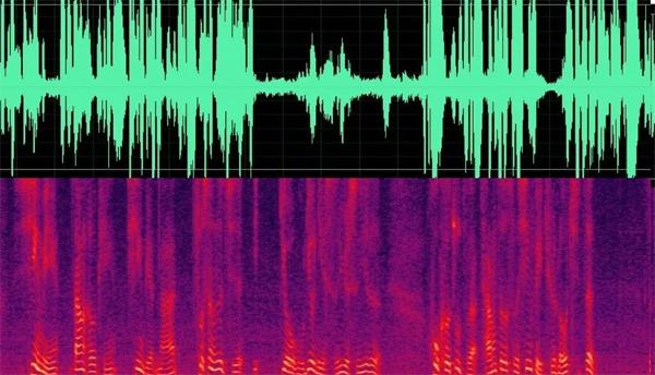 捷通华声:为金融、公安提供安全可靠的声纹识别能力平台